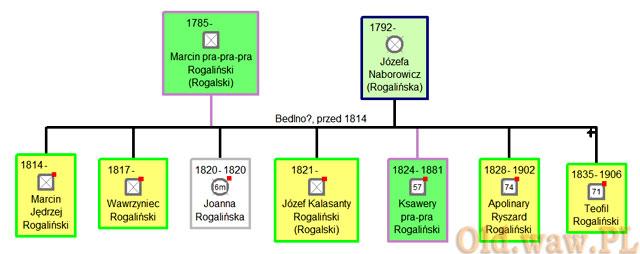 Na zielono oznaczam swoich przodków, żółtym - linie boczne, biało-szare czworokąty to zmarłe dzieci. Czerwonym punktem program oznacza istniejące zdjęcie (tu: dokumentu)
